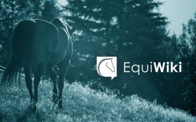 Branding EquiWiki – Coordination de la création de la marque, du logo et de l'identité visuelle