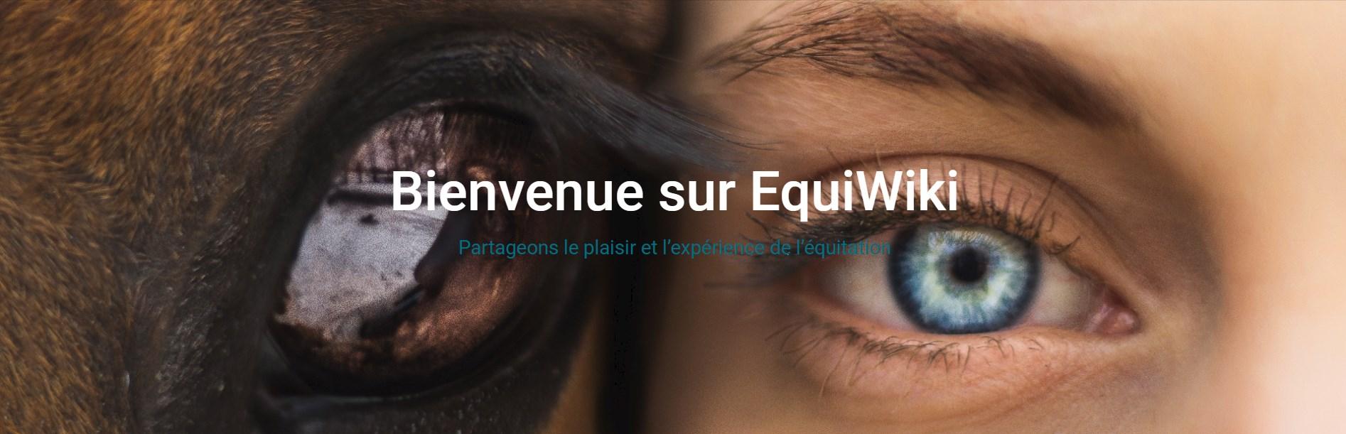 example bannière Equiwiki - Partage équitation (2020-04-22) - identité de marque créée par DailyBooster