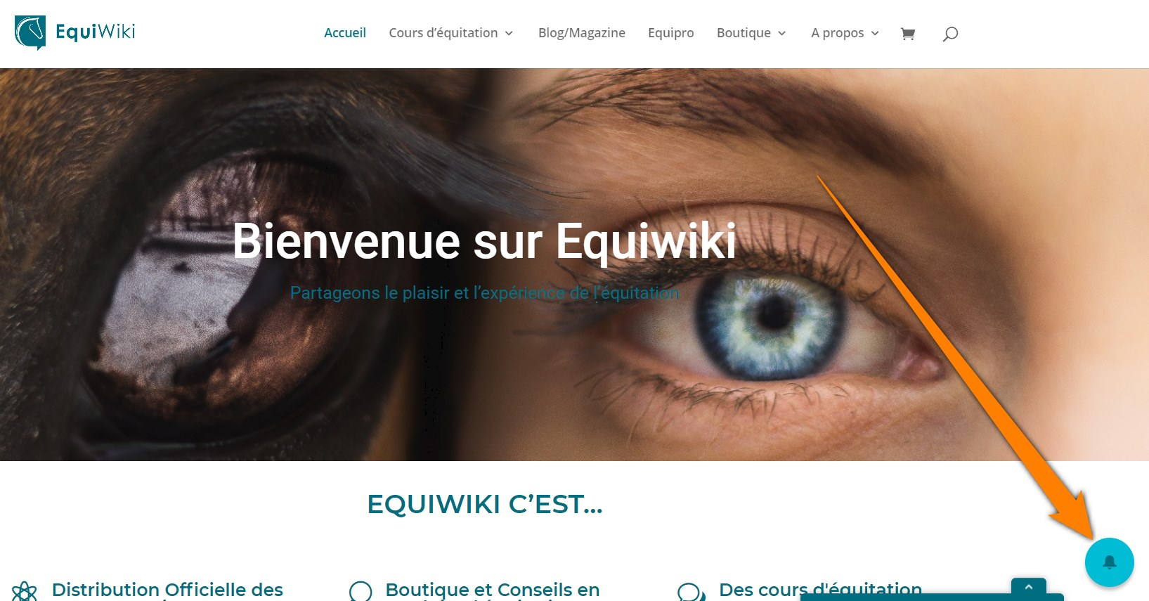 solution notification wisp installée sur Equiwiki, site d'équitation - screenshot homepage (2020-05-03, Equiwiki.ch)